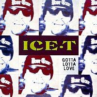 Ice T – Gotta Lotta Love