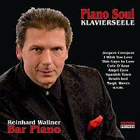 Reinhard Wallner – Piano Soul (Klavierseele)
