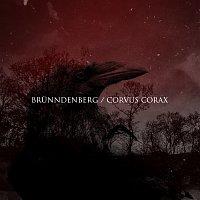 Přední strana obalu CD Corvus Corax