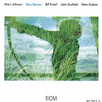 Marc Johnson, Bill Frisell, John Scofield, Peter Erskine – Bass Desires