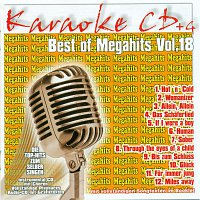 Karaokefun.cc VA – Best of Megahits 18