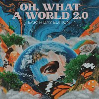 Kacey Musgraves – Oh, What a World 2.0 [Earth Day Edition]