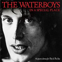 The Waterboys – In a Special Place [the piano demos for This Is The Sea] (the piano demos for This Is The Sea)