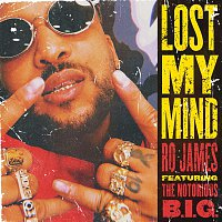 Ro James, The Notorious B.I.G. – Lost My Mind