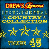 The Hit Crew – Drew's Famous Instrumental Country Collection [Vol. 45]