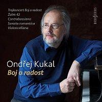 Kalliopé Trio Prague, AKS Orchestra, Roman Janál, Pilsen Philharmonic Orchestra – Ondřej Kukal: Struggle for Joy