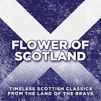 Různí interpreti – Flower Of Scotland: Timeless Classics from the Land of the Brave