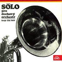 Přední strana obalu CD Sólo pro dechový orchestr