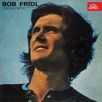 Bob Frídl – Jen vítr to ví