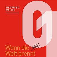 Siegfried Walch – Wenn die Welt brennt