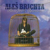Aleš Brichta – Růže pro Algernon