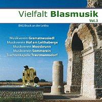 Různí interpreti – Vielfalt Blasmusik Vol.3 - BAG Bruck an der Leitha