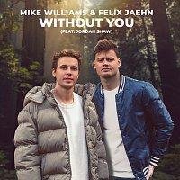 Mike Williams, Felix Jaehn, Jordan Shaw – Without You