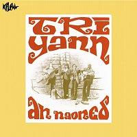Tri Yann – An Naoned