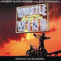 Přední strana obalu CD Whistle Down The Wind