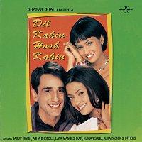 Přední strana obalu CD Dil Kahin Hosh Kahin