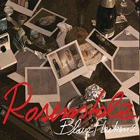 Rosenstolz – Blaue Flecken - Die Fanmixe [Remix Parts]