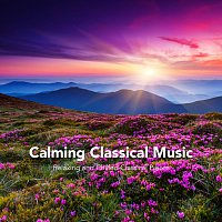 Chris Snelling, Chris Mercer, Max Arnald, Nils Hahn, James Shanon, Jonathan Sarlat – Calming Classical Music: Relaxing and Chilled Classical Pieces