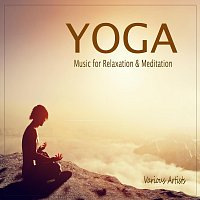 V, A+ – Yoga: Music for Relaxation & Meditation