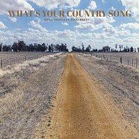 What's Your Country Song (feat. Jonas Rhett)