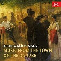 Různí interpreti – Hudba z města na Dunaji