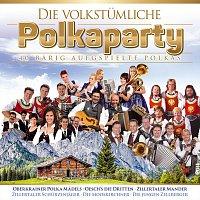 Různí interpreti – Die volkstumliche Polkaparty - 40 barig aufgspielte Polkas