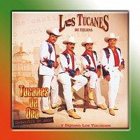 Přední strana obalu CD Tucanes De Oro ... Secuestro De Amor