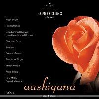 Různí interpreti – Aashiqana - Geet & Ghazals [Vol.1]