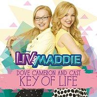 """Přední strana obalu CD Key of Life [From """"Liv and Maddie""""]"""