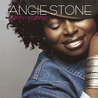 Angie Stone – I Wasn't Kidding