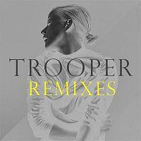 Vanbot – Trooper (Remixes)