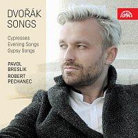 Přední strana obalu CD Dvořák: Písně - Cypřiše, Písně večerní, Cigánské melodie