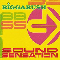 Bigga Bush – Bigga Bush Sound Sensation