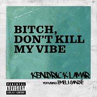 Kendrick Lamar, Emeli Sandé – Bitch, Don't Kill My Vibe [Remix]