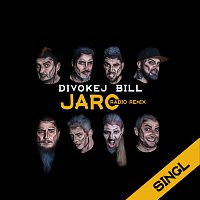 Divokej Bill – Jaro (radio remix)
