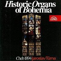 Jaroslav Tůma – Historické varhany II. Sv. Mikuláš v Chebu