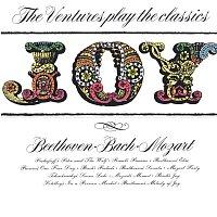 Přední strana obalu CD Joy