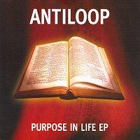Antiloop – Purpose In Life