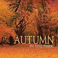 Přední strana obalu CD Autumn In The Park