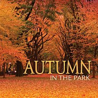 Různí interpreti – Autumn In The Park