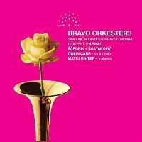 Přední strana obalu CD Bravo orkester vol. 3