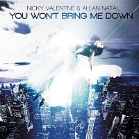 Nicky Valentine, Allan Natal – You Won't Bring Me Down