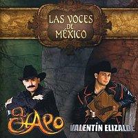 El Chapo, Valentín Elizalde – Las Voces De México