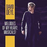 Přední strana obalu CD Melodies of My Heart: Musicals!