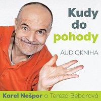 Přední strana obalu CD Nešpor: Kudy do pohody