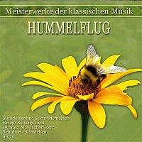 Various Artists.. – Meisterwerke der klassischen Musik: Hummelflug