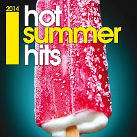 Různí interpreti – Hot Summer Hits 2014