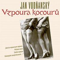 Jan Vodňanský – Vodňanský: Vzpoura kocourů
