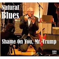 Přední strana obalu CD Shame On You, Mr. Trump