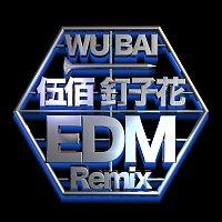 Bai Wu – Ding Zi Hua [EDM Remix]